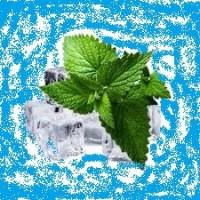 Menthol (glacial)