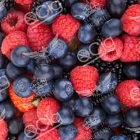 Fruits des bois Les baies mûres de la forêt tentent vos papilles gustatives