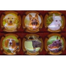 """PETIT Jean-claude """"chiens"""""""